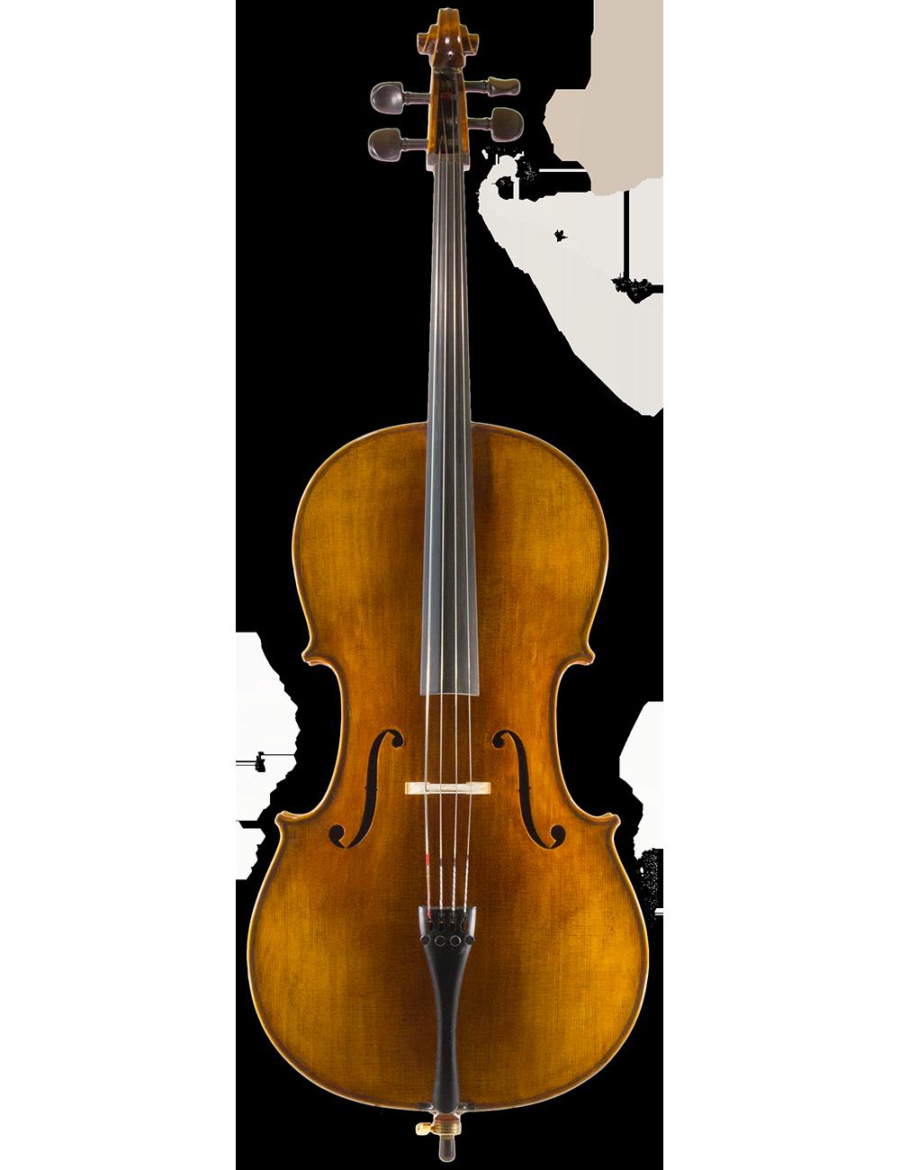 CELLO BY N.T. VIOLIN SHOP, Model of A. Stradivarius Anno 2016, size 3/4, 1/4