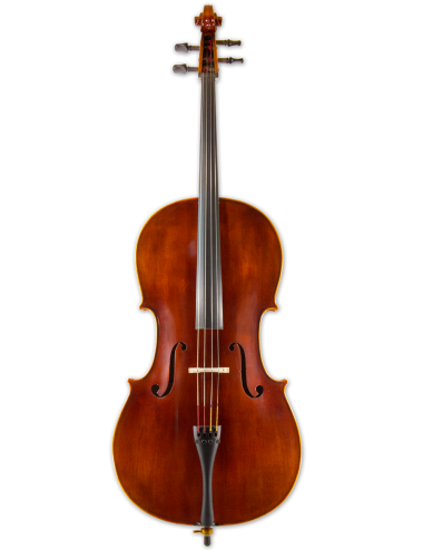 CELLO BY N.T. VIOLIN SHOP, Model of A. Stradivarius Anno 2016, size 4/4