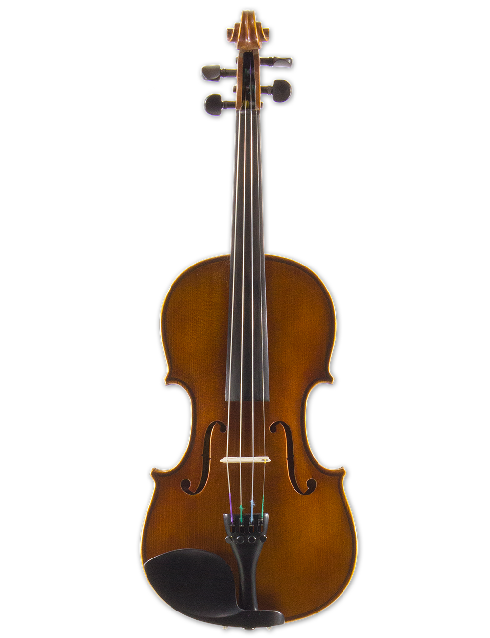 INTERMEDIATE VIOLIN OUTFIT,  Handmade Instrument, Anno 2016