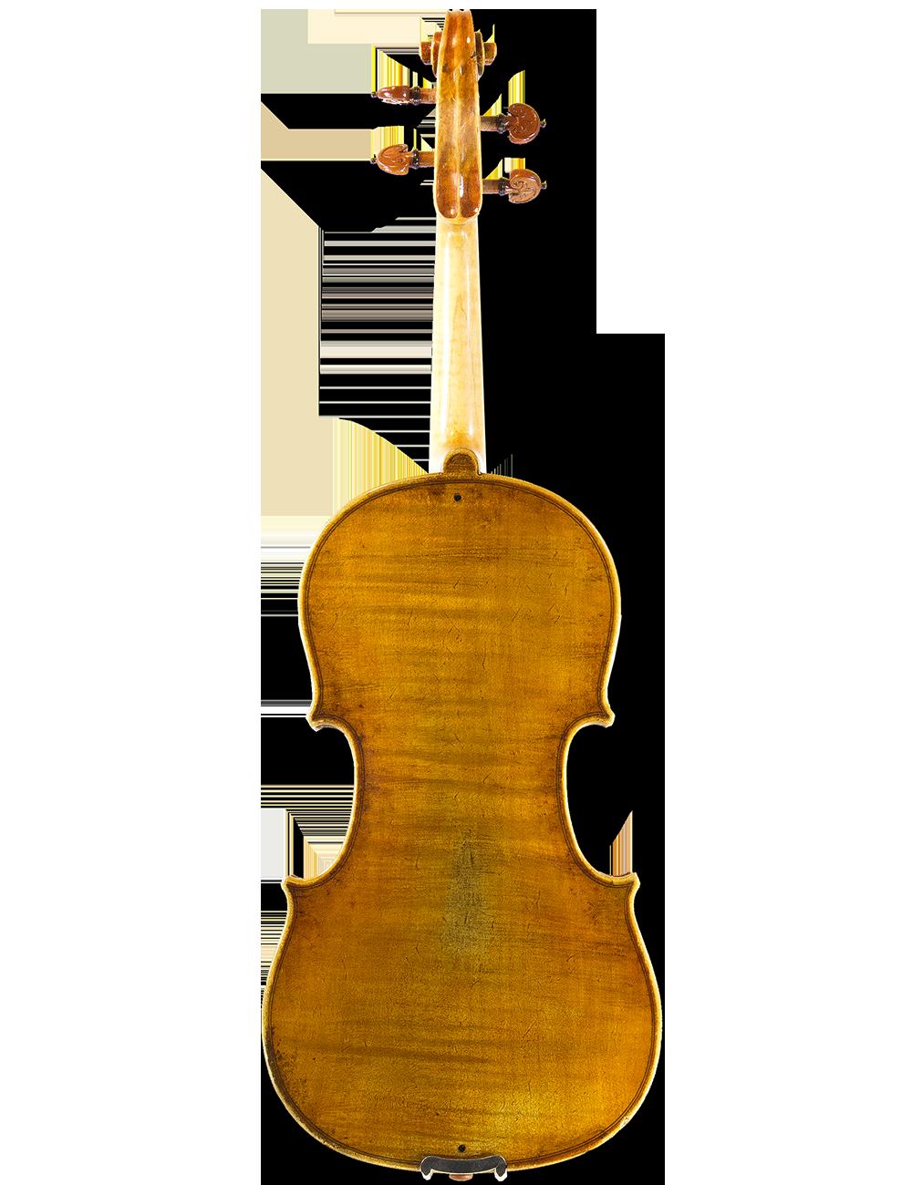 VIOLIN BY GIOVANNI CAVANI, Spilamberto, Fece l'anno 1893