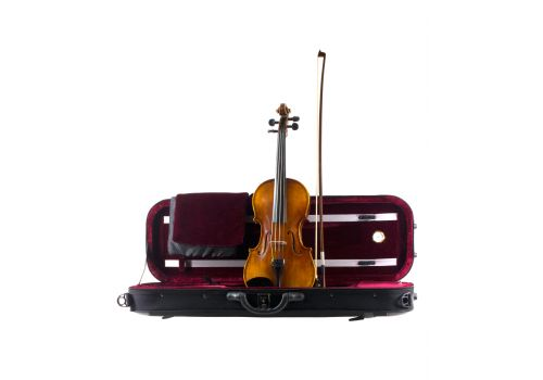 VIOLIN OUTFIT, N.T.V.S, Anno 2017, size 4/4